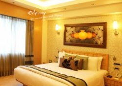 Lemon Tree Premier standard room