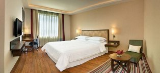 Best Hotels near Delhi Airport