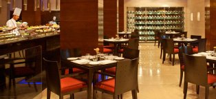 Hotels in New Delhi India near Airport